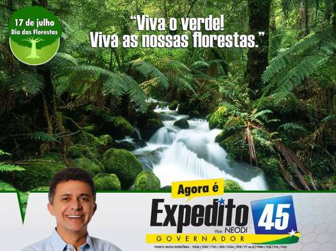 17 de Julho - Dia das Florestas